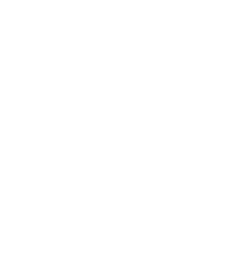 Logo Yves Vigneau